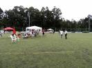 I Torneo - Concello de Cambre _3